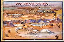 Ngorongoro: The Game Filled Crater
