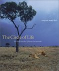 The Circle of Life: Wildlife on the African Savannah